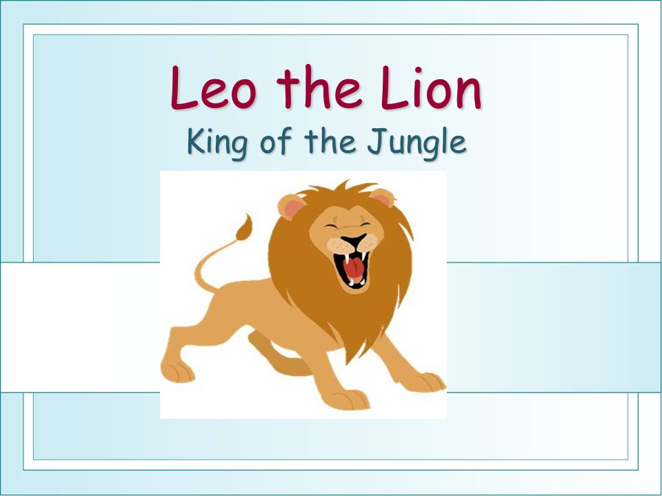 Leo the Lion King of the Jungle