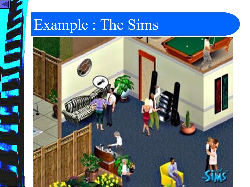 12 Example : The Sims