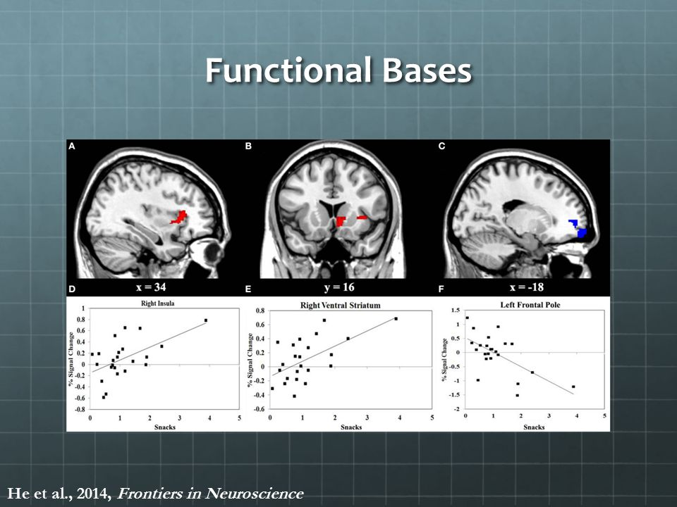 Functional Bases He et al., 2014, Frontiers in Neuroscience