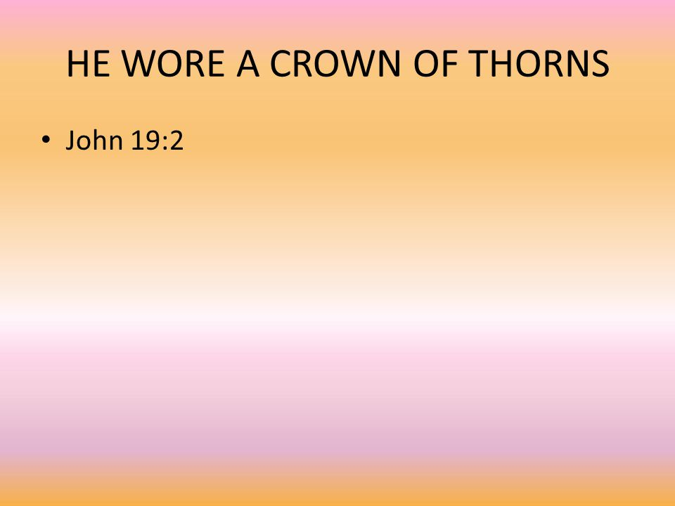 HE WORE A CROWN OF THORNS John 19:2