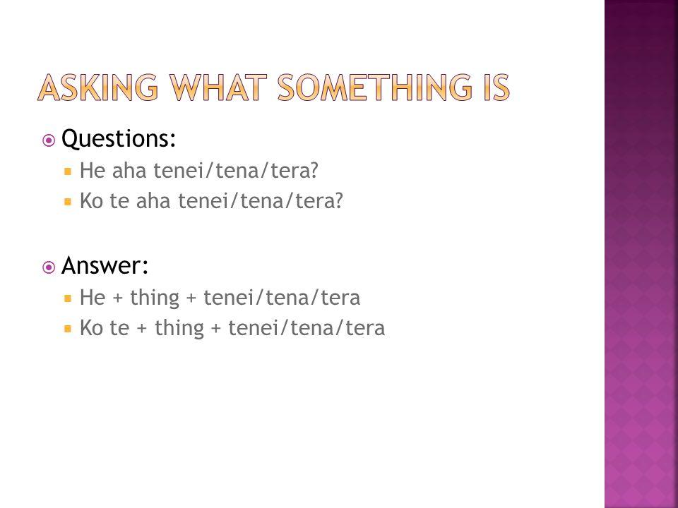  Questions:  He aha tenei/tena/tera.  Ko te aha tenei/tena/tera.