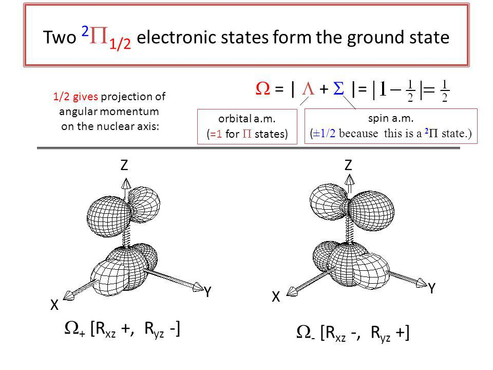 Two 2  1/2 electronic states form the ground state Z Y X  - [R xz -, R yz +]  + [R xz +, R yz -] Y Z X  = |  +  |= 1/2 gives projection of angular momentum on the nuclear axis: orbital a.m.