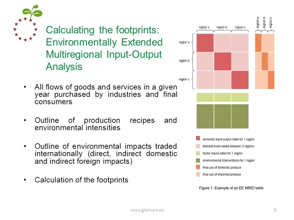 Calculating the footprints: Environmentally Extended Multiregional Input-Output Analysis All flows of goods and services in a given year purchased by