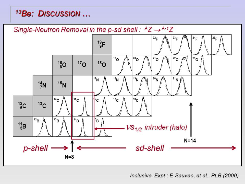 s 1/2 intruder (halo) s 1/2 intruder (halo) p-shellsd-shell Single-Neutron Removal in the p-sd shell : A Z  A-1 Z Inclusive Expt : E Sauvan, et al., PLB (2000) Inclusive Expt : E Sauvan, et al., PLB (2000) 13 Be: D ISCUSSION …