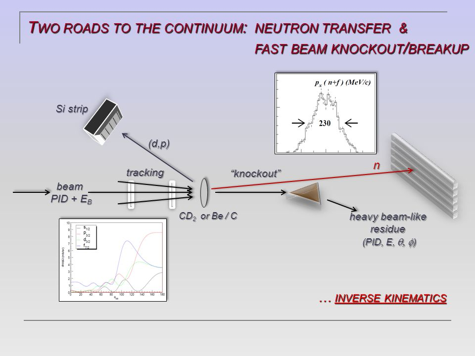 T WO ROADS TO THE CONTINUUM : NEUTRON TRANSFER & FAST BEAM KNOCKOUT / BREAKUP FAST BEAM KNOCKOUT / BREAKUP … INVERSE KINEMATICS … INVERSE KINEMATICS n (d,p) Si strip beam PID + E B tracking heavy beam-like residue (PID, E,  ) CD 2 or Be / C knockout