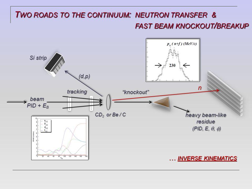 8 He(d,p) SINGLE - NEUTRON TRANSFER … 8 He(d,p) SINGLE - NEUTRON TRANSFER … 1s 1/2 1p 3/2 1p 1/2 2s 1/2 1d 5/2 N=6  Proton energy and angle  E x of recoil B  Proton angular distribution, d  / d   angular momentum transfered by neutron, ℓ n  angular momentum transfered by neutron, ℓ n  d  / d   (expt) = S d  / d   (reaction theory) 8 He(d,p) 9 He  J  = 1/2 +  1/2 -, 5/2 +, 3/2 - (iff 8 He gs 2p-2h )* 8 He(d,p) 9 He  J  = 1/2 +  1/2 -, 5/2 +, 3/2 - (iff 8 He gs 2p-2h )* ppp AA B d d + A  p + B n n d=p+n B=A+n neutrons 8 He gs J  = 0 + 8 He gs J  = 0 + * 8 He(p,d) S(p3/2)  4… 8 He(p,t)  2p-2h … MUST [ PRC2006, PLB2007 ] * 8 He(p,d) S(p3/2)  4… 8 He(p,t)  2p-2h … MUST [ PRC2006, PLB2007 ]