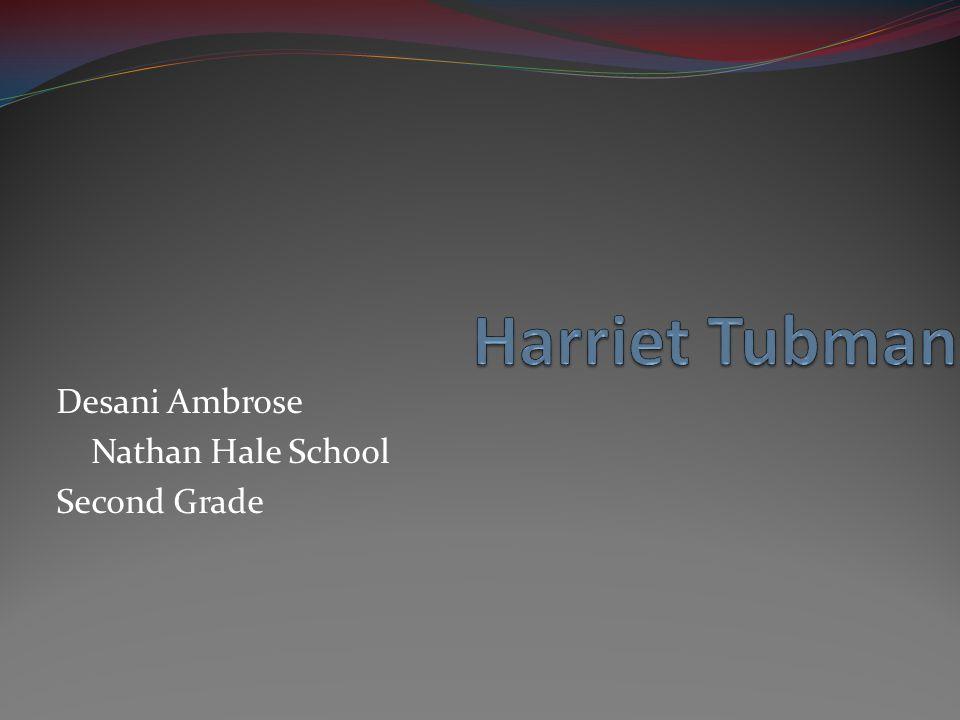 Desani Ambrose Nathan Hale School Second Grade