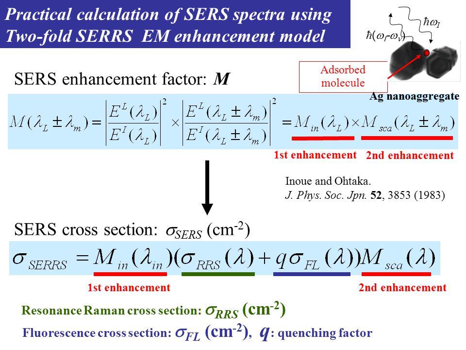 SERS enhancement factor: M 1st enhancement 2nd enhancement Adsorbed molecule Ag nanoaggregate ħ (  I -   ħIħI Inoue and Ohtaka.