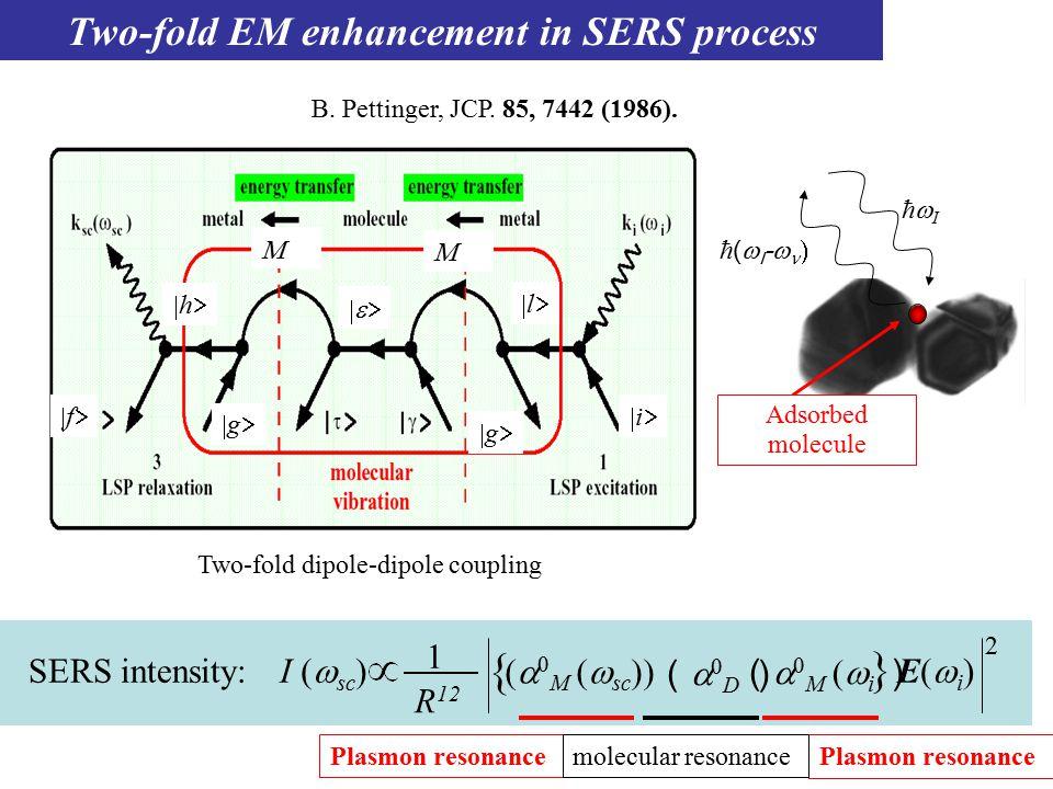   M   sc   (   D  ) I (  sc ) R 12 1 (M (i )(M (i ) SERS intensity: E(i)E(i) { } 2 Two-fold dipole-dipole coupling  ll hh   ffii gg gg Two-fold EM enhancement in SERS process B.