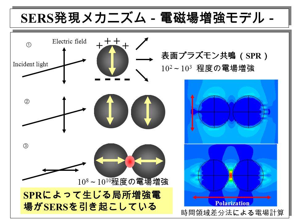 + + + + - -- - Incident light Electric field Polarization ① ② ③ 時間領域差分法による電場計算 SERS 発現メカニズム-電磁場増強モデル- 表面プラズモン共鳴 ( SPR ) 10 2 ~ 10 3 程度の電場増強 10 8 ~ 10 10 程度の電場増強 SPR によって生じる局所増強電 場が SERS を引き起こしている