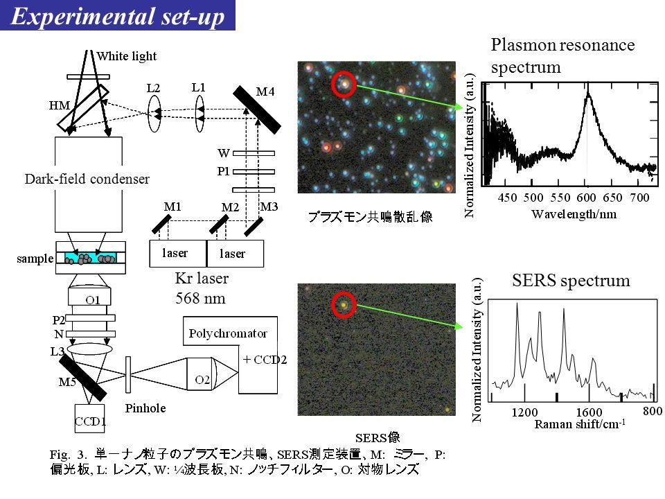 Experimental set-up Kr laser 568 nm Plasmon resonance spectrum SERS spectrum Dark-field condenser