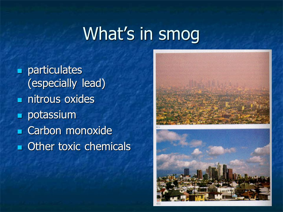 What's in smog particulates (especially lead) particulates (especially lead) nitrous oxides nitrous oxides potassium potassium Carbon monoxide Carbon monoxide Other toxic chemicals Other toxic chemicals