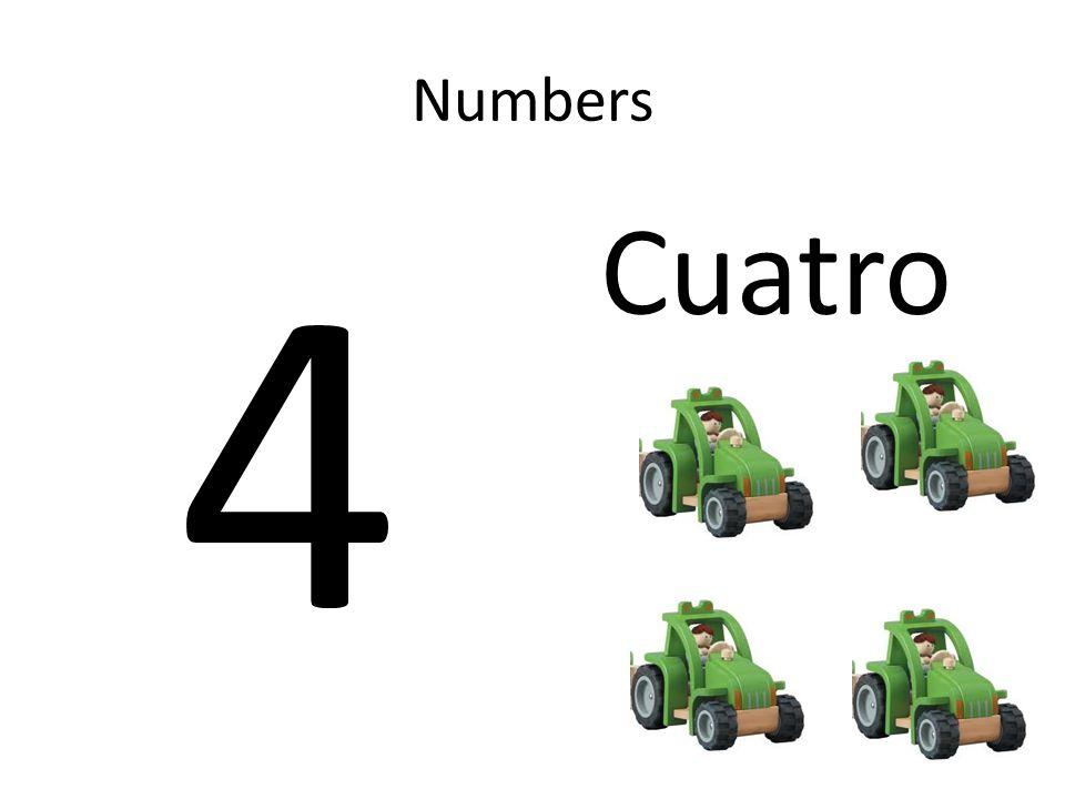 Numbers 5 Cinco