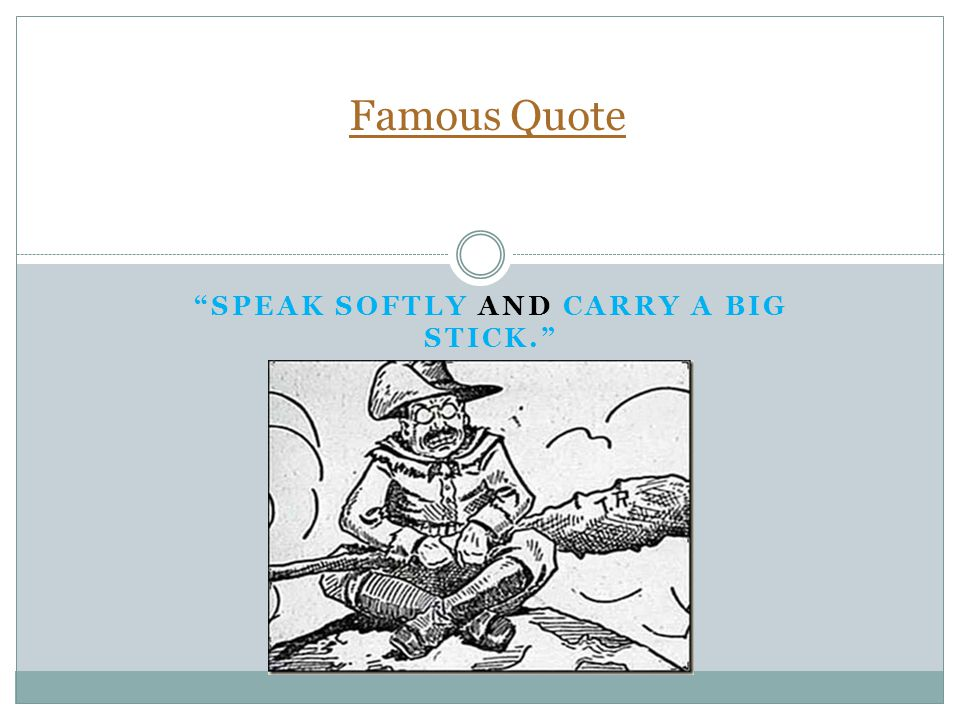 SPEAK SOFTLY AND CARRY A BIG STICK. Famous Quote
