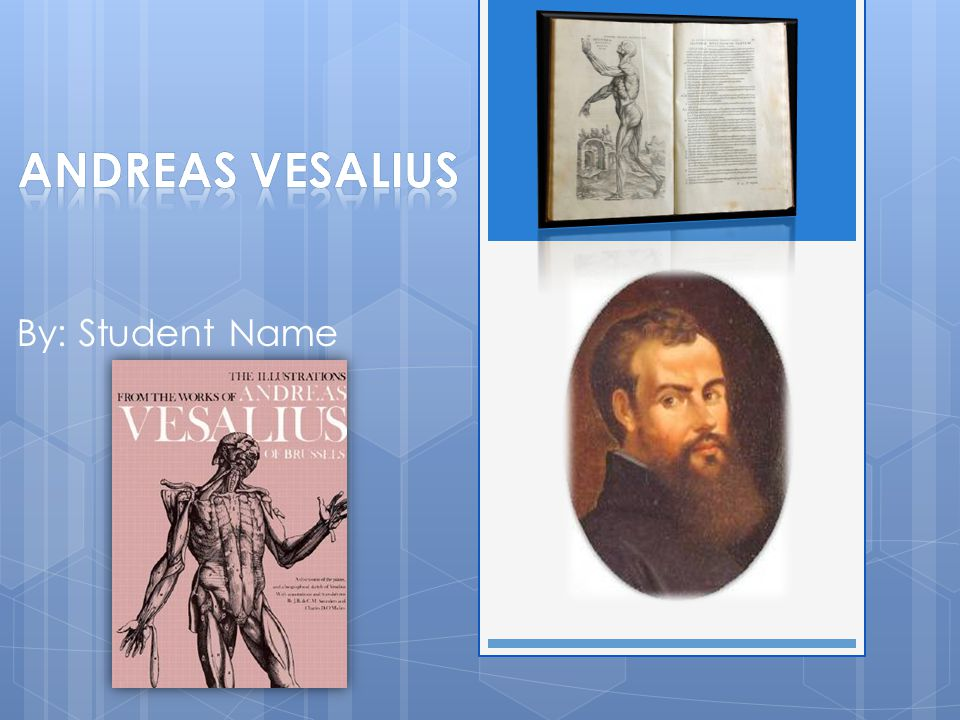 Historical Question What did Andreas Vesalius do that was important?