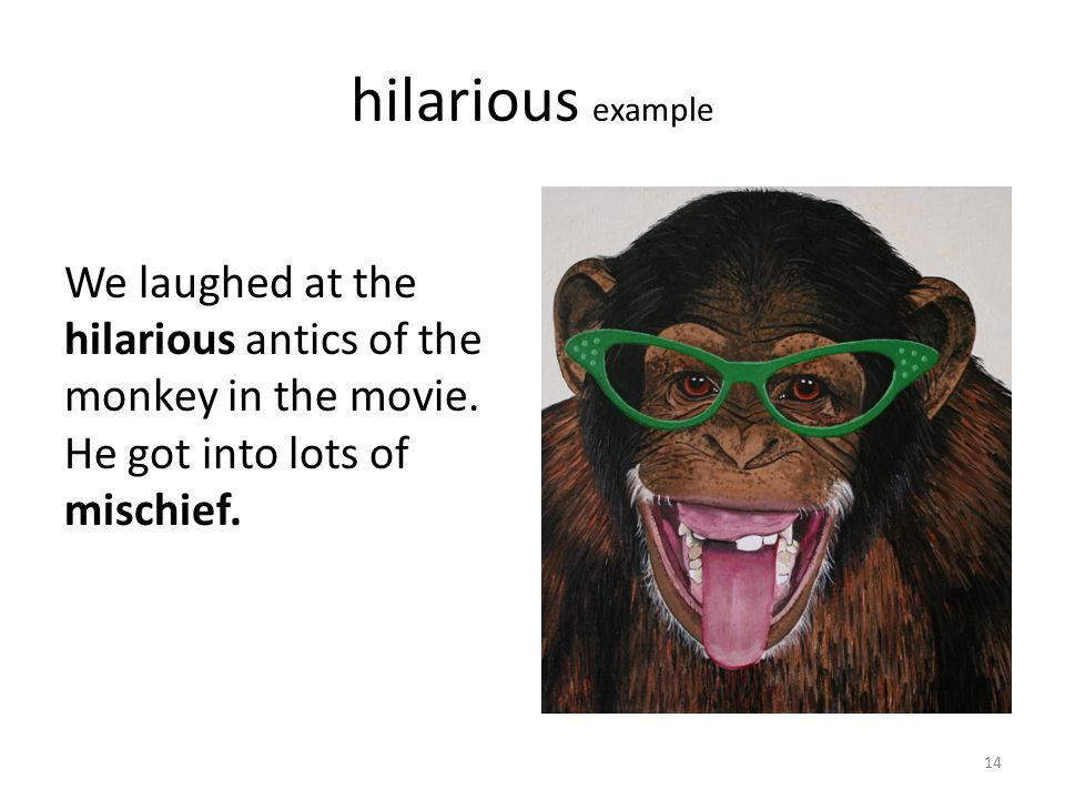 hilarious example We laughed at the hilarious antics of the monkey in the movie. He got into lots of mischief. 14
