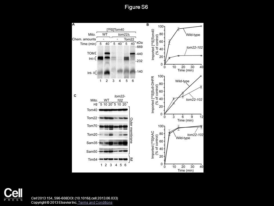 Figure S6 Cell 2013 154, 596-608DOI: (10.1016/j.cell.2013.06.033) Copyright © 2013 Elsevier Inc.
