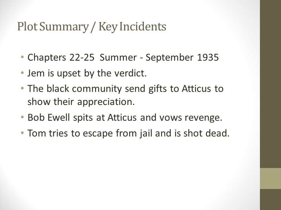 Plot Summary / Key Incidents Chapters 22-25 Summer - September 1935 Jem is upset by the verdict.