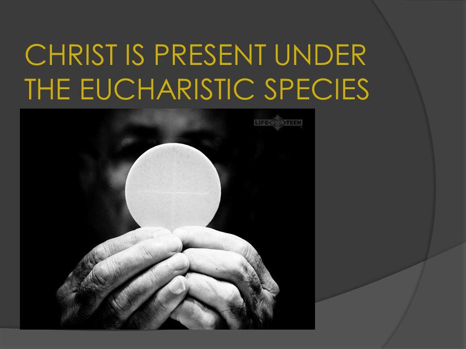 CHRIST IS PRESENT UNDER THE EUCHARISTIC SPECIES