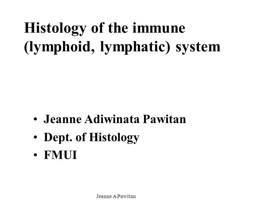 Jeanne A Pawitan Lymph (lymphoid, lymphatic) nodule, lymphonodulus – lymphoid follicles =circumscribed-spherical/ovoid-closely packed-lymphocytes In diffuse lymphoid tissue Location: °Lymph node –cortex °Spleen – white pulp °Tonsils °Lamina propria (MALT): Peyer's patches, etc.