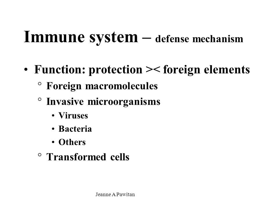 Jeanne A Pawitan Bronchus-associated lymphoid tissue ≈ Peyer's patches – walls – bronchus – esp.