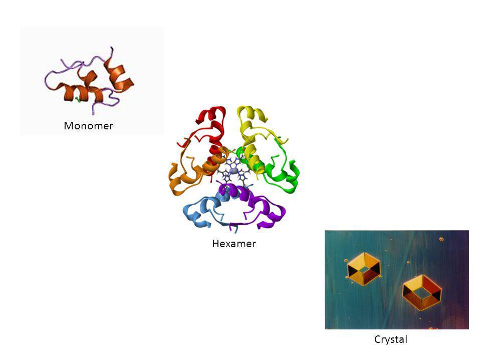 Hexamer Monomer Crystal