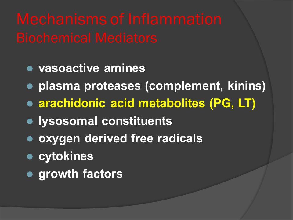 Mechanisms of Inflammation Biochemical Mediators l vasoactive amines l plasma proteases (complement, kinins) l arachidonic acid metabolites (PG, LT) l
