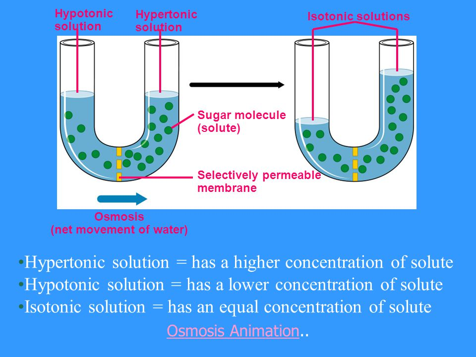 Osmosis is the special term for the net diffusion of H 2 0 across a selectively permeable membrane. Osmosis is the movement of H 2 0 from a high [H 2