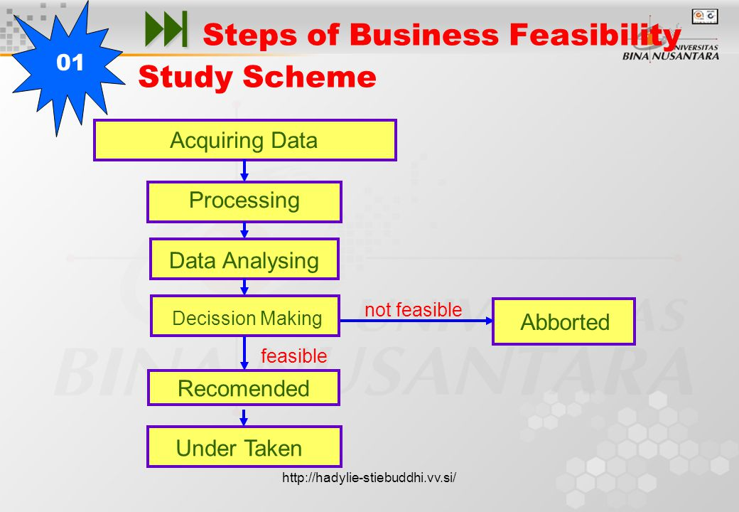   Steps of Business Feasibility Study Scheme 01 Acquiring Data Processing Data Analysing Decission Making Under Taken not feasible feasible Recomended Abborted http://hadylie-stiebuddhi.vv.si/