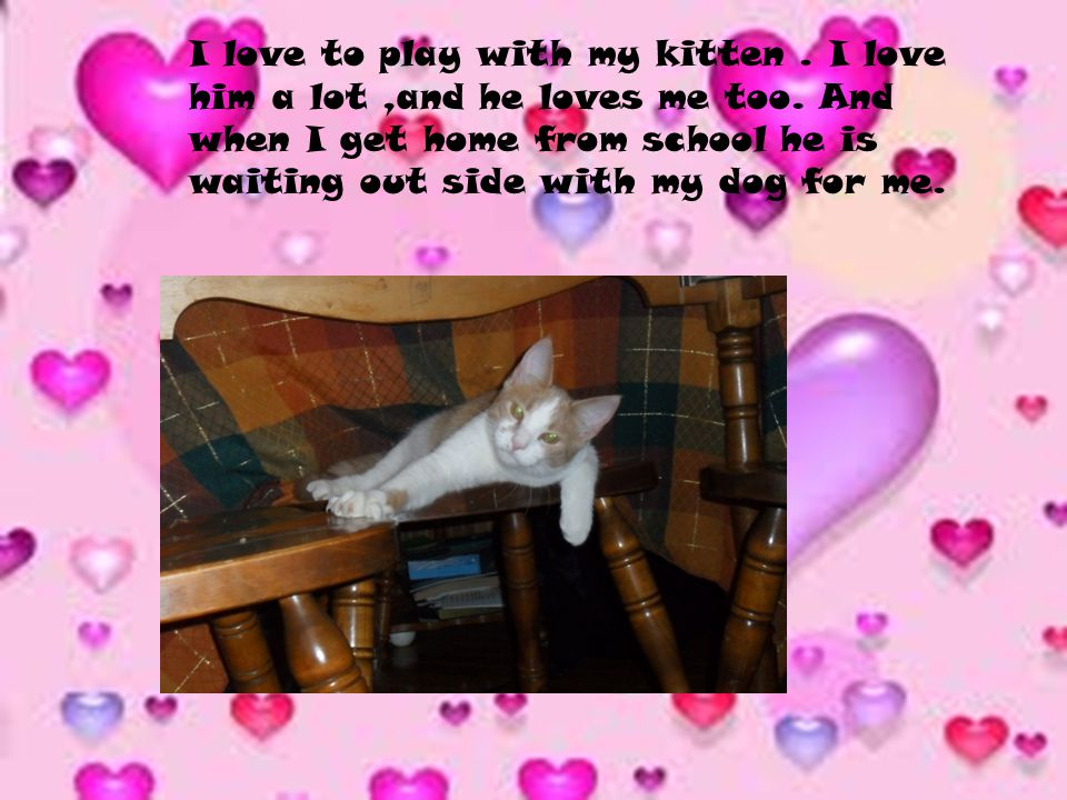 I love to play with my kitten. I love him a lot,and he loves me too.
