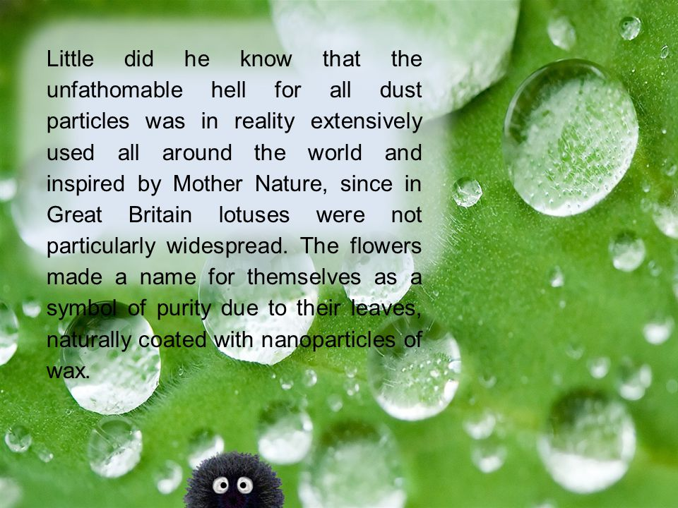 Little did he know that the unfathomable hell for all dust particles was in reality extensively used all around the world and inspired by Mother Nature, since in Great Britain lotuses were not particularly widespread.