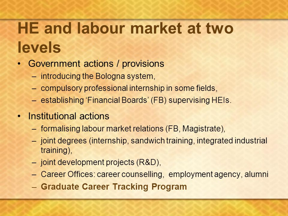 HE and labour market at two levels Government actions / provisions –introducing the Bologna system, –compulsory professional internship in some fields, –establishing 'Financial Boards' (FB) supervising HEIs.