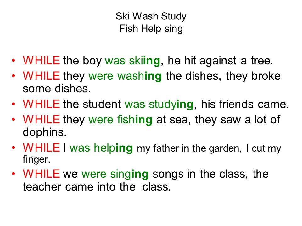 Ski Wash Study Fish Help sing WHILE the boy was skiing, he hit against a tree.