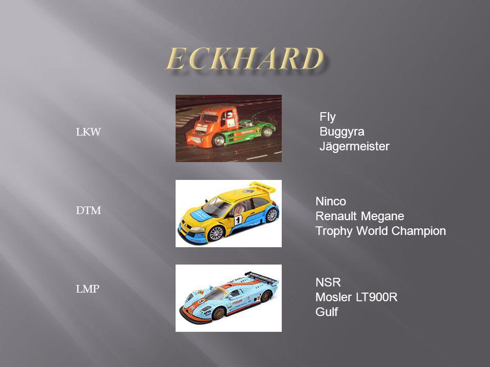 LKW DTM LMP Fly Buggyra Jägermeister Ninco Renault Megane Trophy World Champion NSR Mosler LT900R Gulf