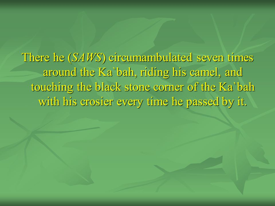 There he (SAWS) circumambulated seven times around the Ka`bah, riding his camel, and touching the black stone corner of the Ka`bah with his crosier ev