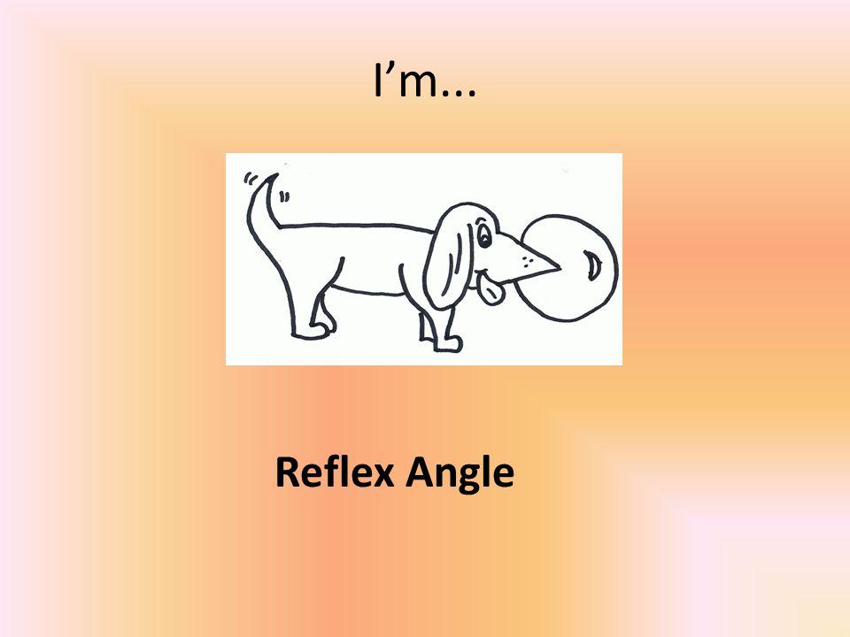 I'm... Reflex Angle