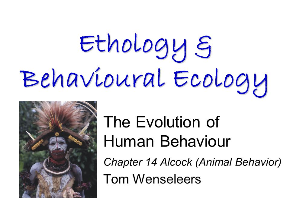 The Evolution of Human Behaviour Chapter 14 Alcock (Animal Behavior) Tom Wenseleers Ethology & Behavioural Ecology