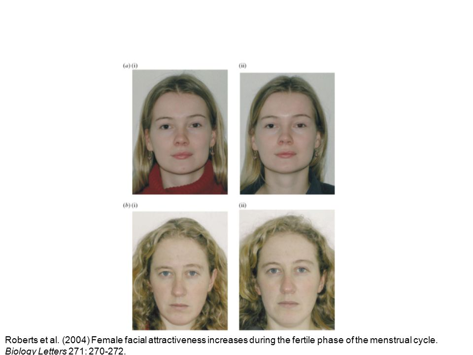 Roberts et al. (2004) Female facial attractiveness increases during the fertile phase of the menstrual cycle. Biology Letters 271: 270-272.
