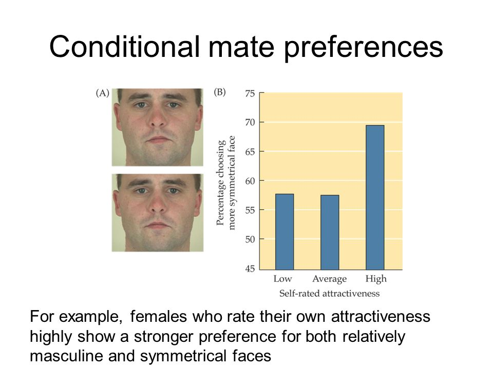 Conditional mate preferences For example, females who rate their own attractiveness highly show a stronger preference for both relatively masculine an