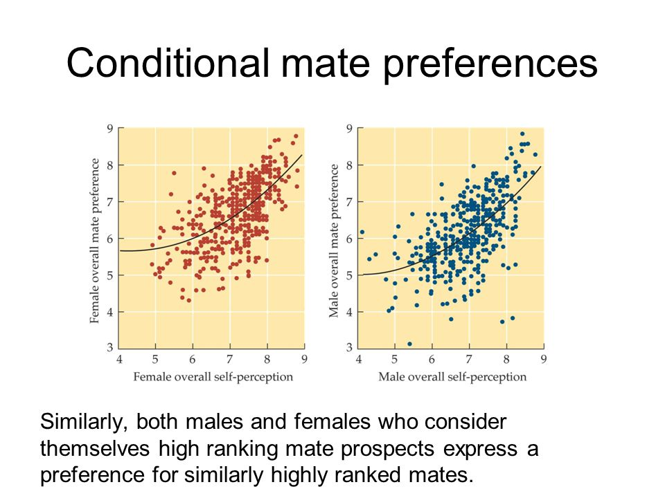 Conditional mate preferences Similarly, both males and females who consider themselves high ranking mate prospects express a preference for similarly