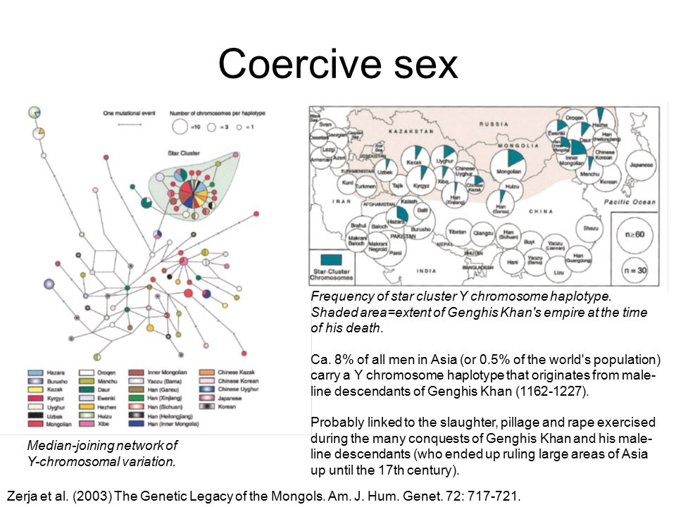 Coercive sex Frequency of star cluster Y chromosome haplotype. Shaded area=extent of Genghis Khan's empire at the time of his death. Ca. 8% of all men