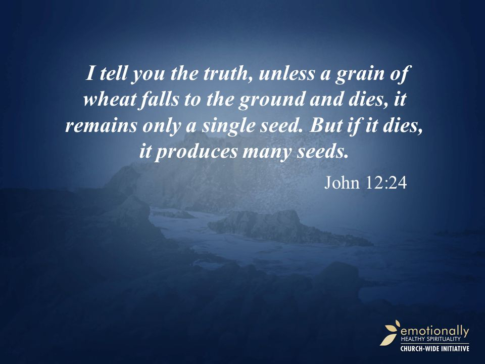 I tell you the truth, unless a grain of wheat falls to the ground and dies, it remains only a single seed. But if it dies, it produces many seeds. Joh