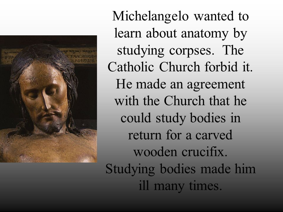 Michelangelo's Youth Apprenticed at age 12 to painter in Florence Lived with ruling Medici family in their palace Started working as a sculptor under Donatello Sculpted Bacchus