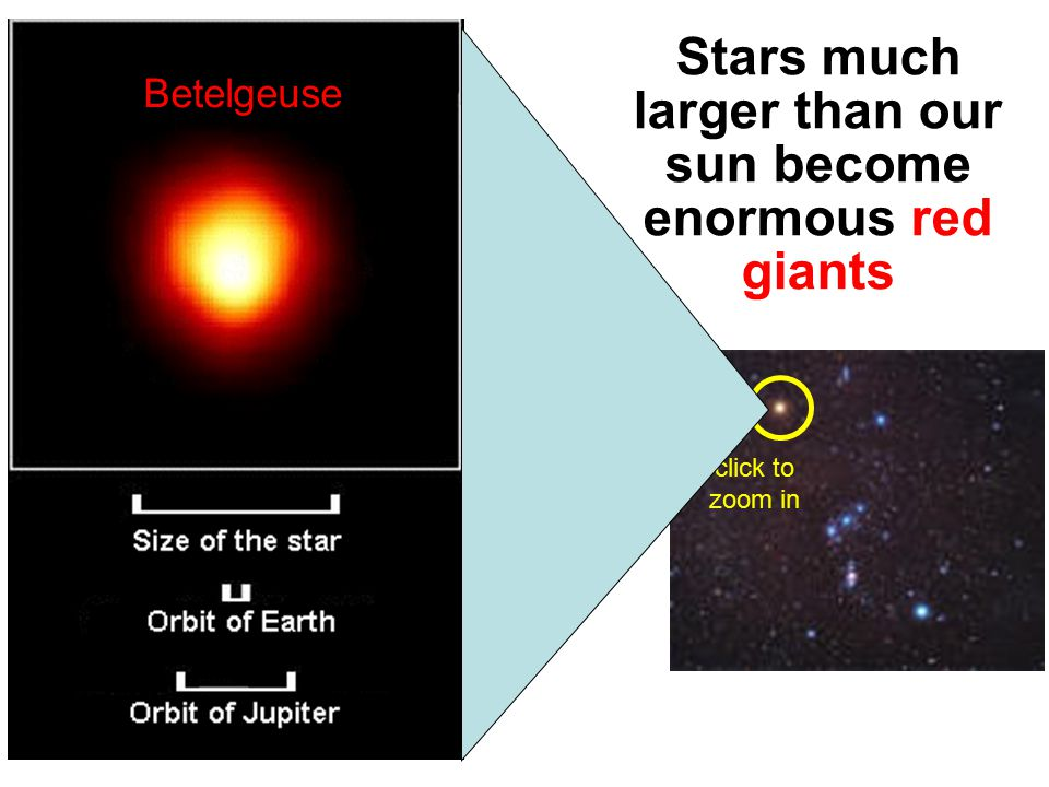 Stars smaller than our sun never become red giants – they just fizzle out into white dwarfs Which eventually burns out completely into a Black Dwarf