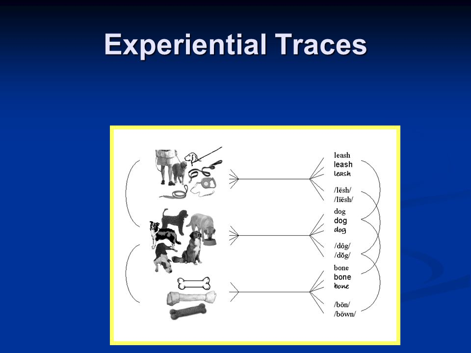 Experiential Traces