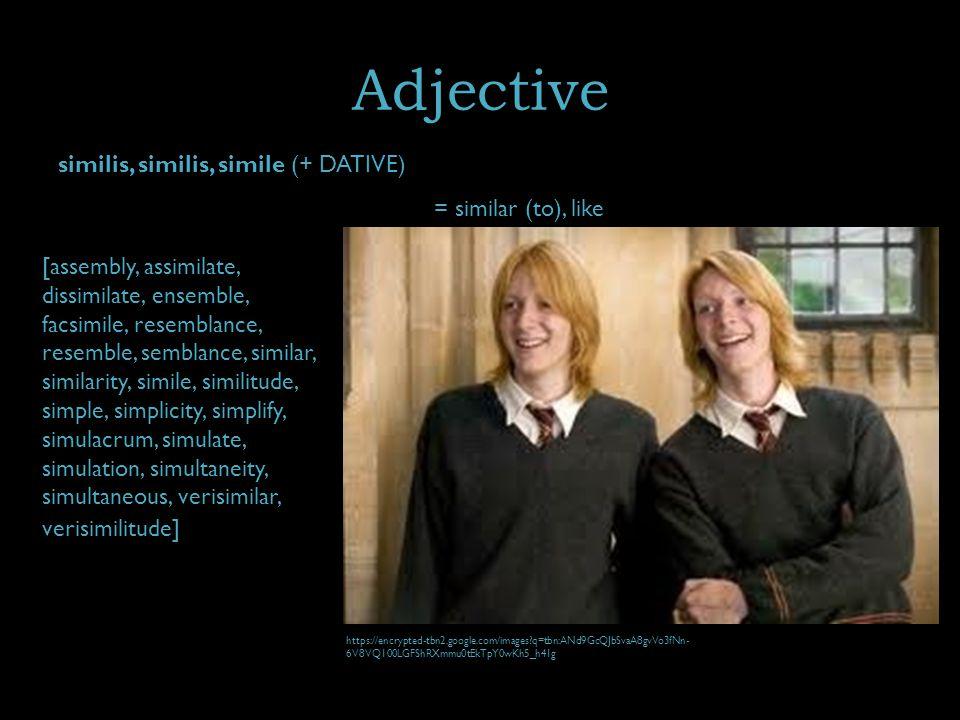 Adjective similis, similis, simile (+ DATIVE) = similar (to), like [assembly, assimilate, dissimilate, ensemble, facsimile, resemblance, resemble, semblance, similar, similarity, simile, similitude, simple, simplicity, simplify, simulacrum, simulate, simulation, simultaneity, simultaneous, verisimilar, verisimilitude] https://encrypted-tbn2.google.com/images q=tbn:ANd9GcQJbSvaA8gvVo3fNn- 6V8VQ100LGFShRXmmu0tEkTpY0wKh5_h41g