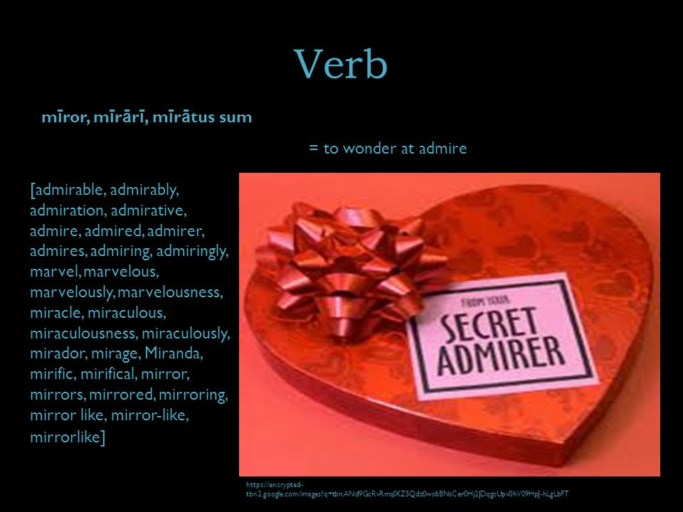 Verb m ī ror, m ī r ā r ī, m ī r ā tus sum = to wonder at admire [admirable, admirably, admiration, admirative, admire, admired, admirer, admires, adm