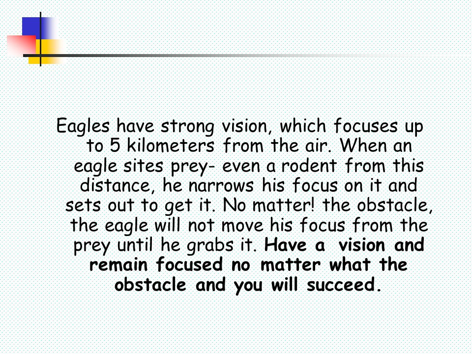 Eagles do not eat dead things.He feeds on fresh prey.