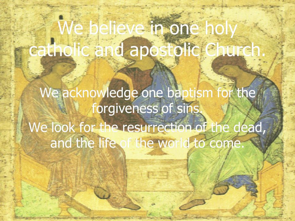 We believe in one holy catholic and apostolic Church.
