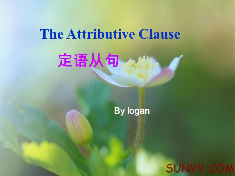 The Attributive Clause 定语从句 By logan
